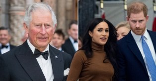 Prince Charles Supports Harry & Meghan
