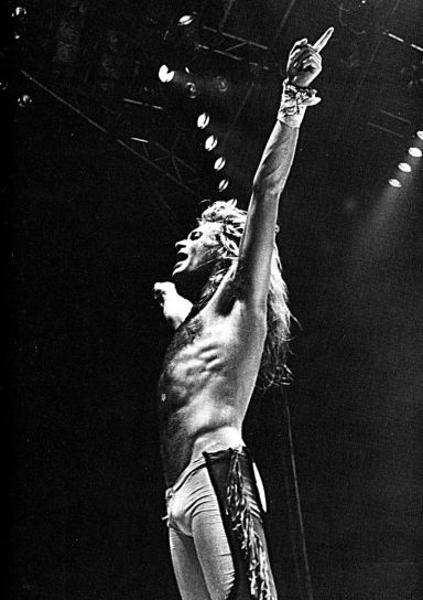 Superstar David Lee Roth