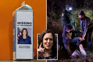 Kamala Harris Milk Carton